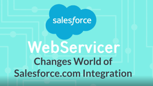 salesforce integration webservicer anodius