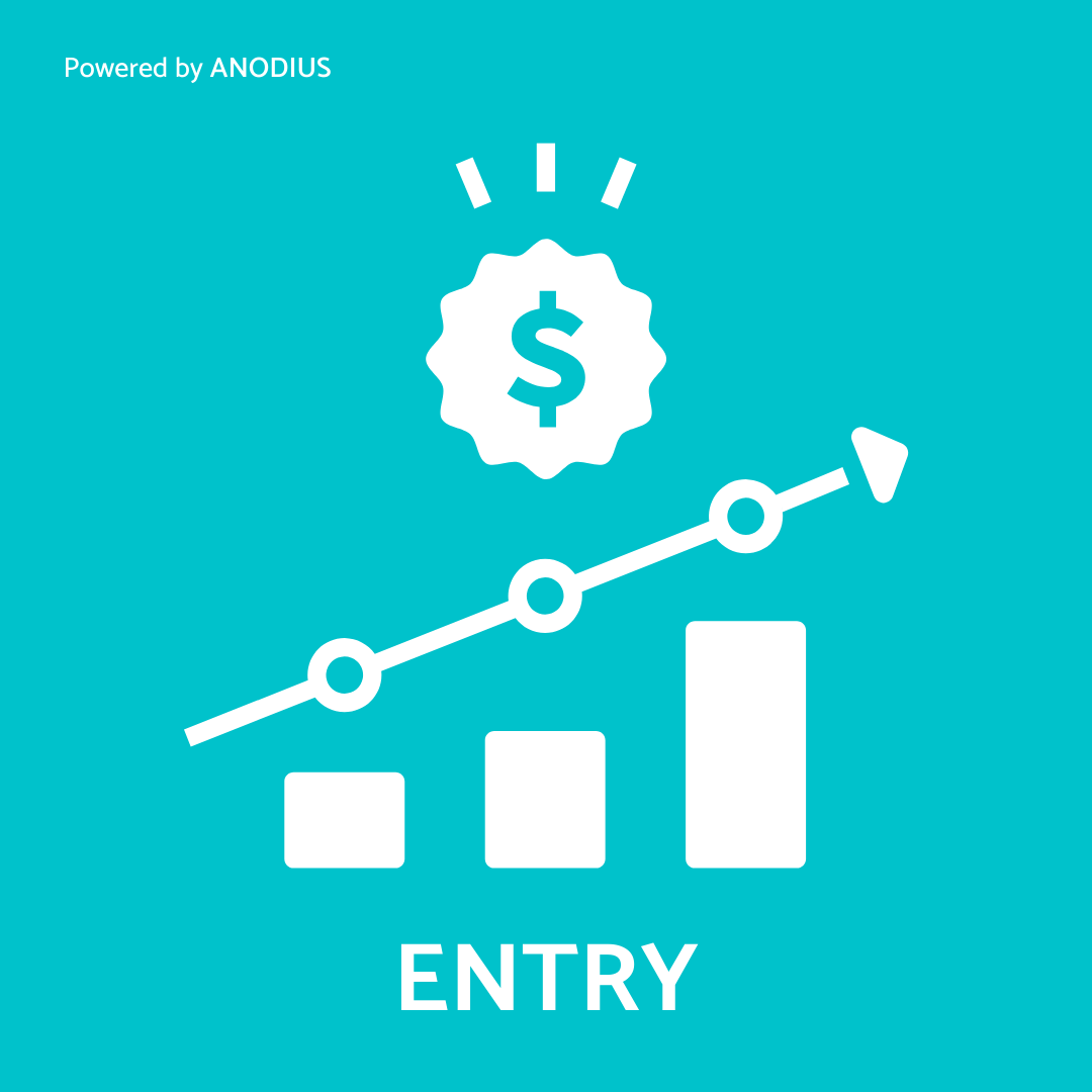 sales-package-salesforce-entry-anodius-and