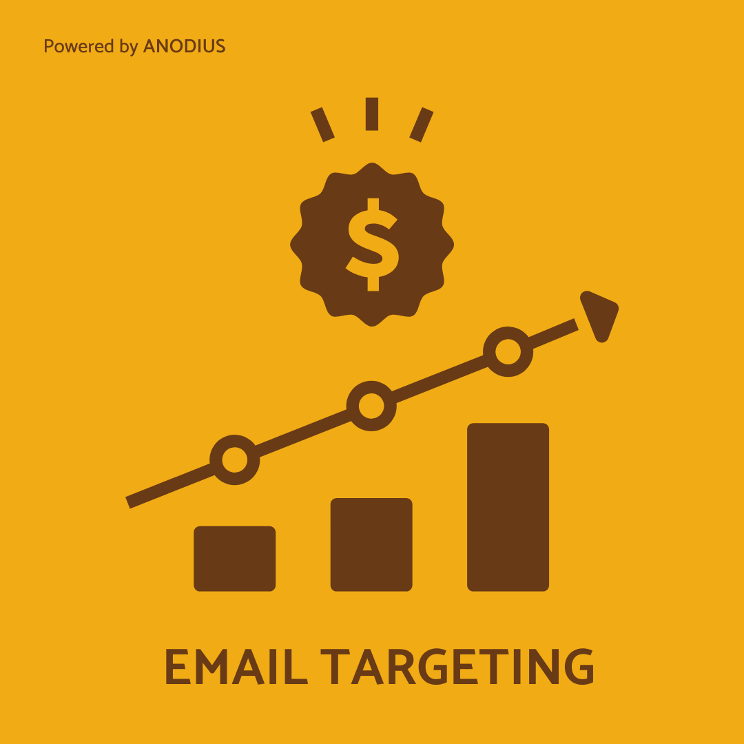 Highly-targeted-email-campaigns-and-andodius-solutions-2